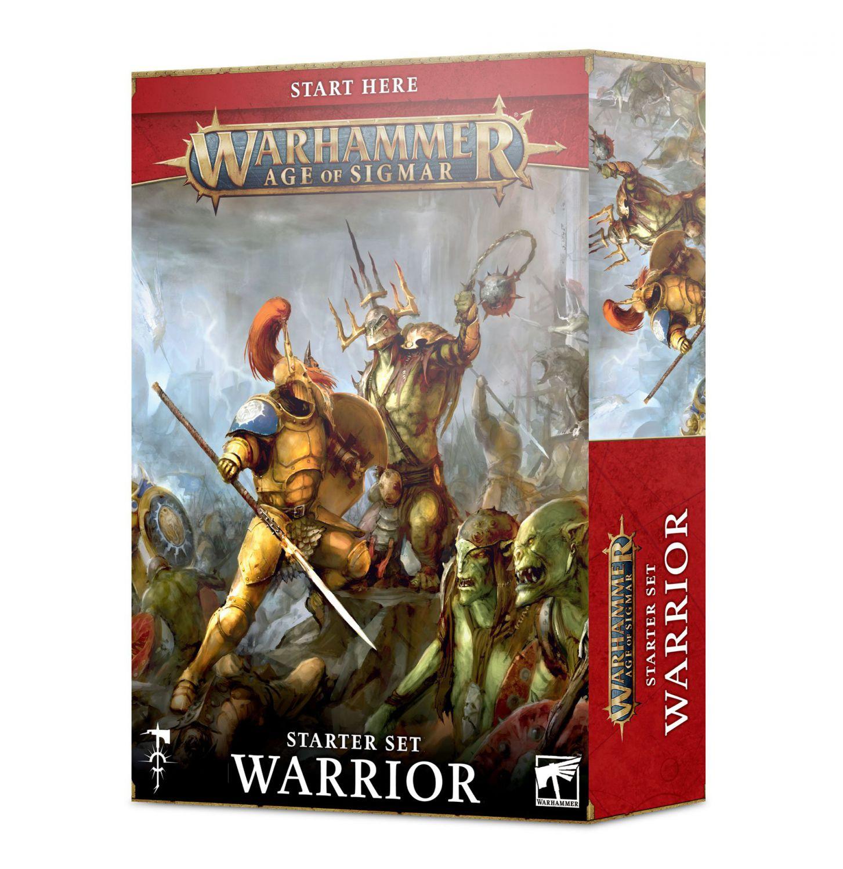 Warhammer age of sigmar starter set warrior
